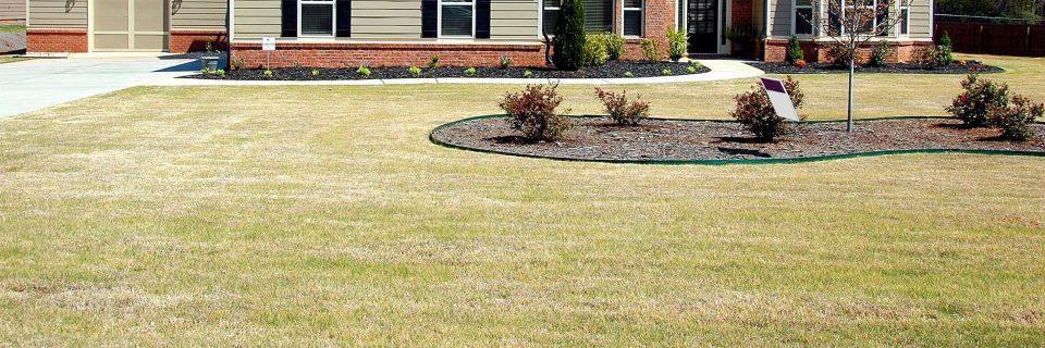 Spring Irrigation Turn On Service